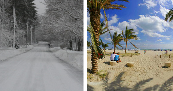 South Beach Or Bust