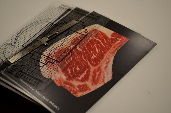 Moderately abundant beef grading chart
