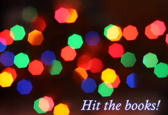 Hit the books - a holiday book list