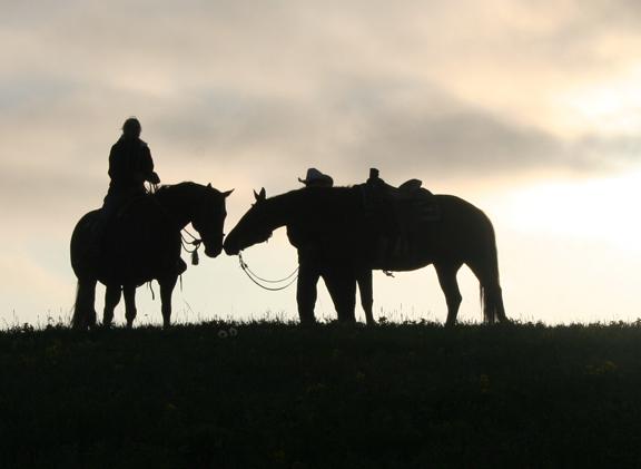 Calgary ranch at dawn