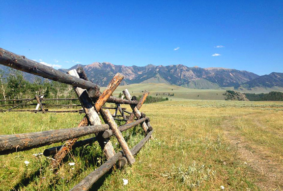 fence in Montana