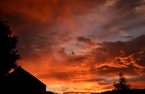 Sunrise at Tuckaway Farm - photo courtesy Jennifer Kiko, FarmgirlFollies.com