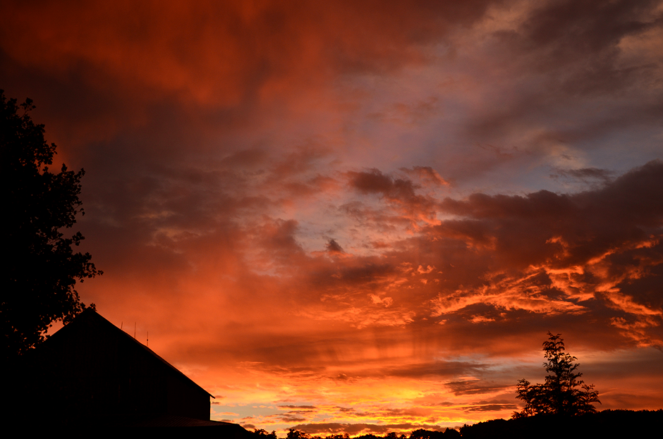 Sunrise like wildfire at Tuckaway Farm - photo courtesy Jennifer Kiko, FarmgirlFollies.com